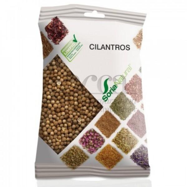 CILANTROS 60GR R.02061